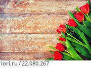 Купить «close up of red tulips on wooden background», фото № 22080267, снято 3 марта 2015 г. (c) Syda Productions / Фотобанк Лори