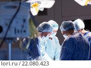Купить «group of surgeons in operating room at hospital», фото № 22080423, снято 23 декабря 2015 г. (c) Syda Productions / Фотобанк Лори