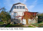 Купить «Дачный домик с ломаной крышей», эксклюзивное фото № 22103103, снято 17 октября 2015 г. (c) Александр Щепин / Фотобанк Лори