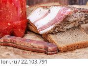 Купить «Аппетитный кусок сала с чёрным хлебом и соусом», фото № 22103791, снято 26 ноября 2015 г. (c) Алёшина Оксана / Фотобанк Лори