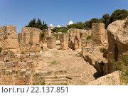Руины Карфагена. Тунис. (2012 год). Стоковое фото, фотограф Владимир Чинин / Фотобанк Лори