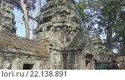 Купить «Храм Та Пром в Ангкор-Ват, Камбоджа», видеоролик № 22138891, снято 10 марта 2016 г. (c) Михаил Коханчиков / Фотобанк Лори