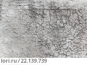 Купить «Текстура грубой серой оштукатуренной стены», фото № 22139739, снято 9 мая 2011 г. (c) Игорь Долгов / Фотобанк Лори