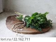 Букетик Гарни зелень пучок. Стоковое фото, фотограф Юлия Рассохина / Фотобанк Лори