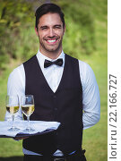 Купить «Handsome waiter holding a tray with two glasses of wine», фото № 22166727, снято 23 ноября 2015 г. (c) Wavebreak Media / Фотобанк Лори