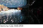 Купить «Полукруглый пингвинариум со стеклянной стеной и движущейся лентой для посетителей. Планета Пингвинов, Лоро-парк, Тенерифе, Канарские острова, Испания», видеоролик № 22169059, снято 5 февраля 2016 г. (c) Кекяляйнен Андрей / Фотобанк Лори