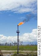 Факел для сжигания попутного газа. Стоковое фото, фотограф Георгий Shpade / Фотобанк Лори