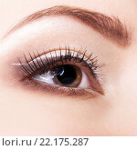 Купить «Female eye with fase art makeup», фото № 22175287, снято 12 февраля 2016 г. (c) Serg Zastavkin / Фотобанк Лори