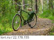 Велосипед в парке. Стоковое фото, фотограф Владимир Бектышев / Фотобанк Лори