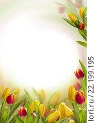 Купить «Весенние тюльпаны», фото № 22199195, снято 18 июля 2019 г. (c) Ирина Толокновская / Фотобанк Лори