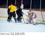 Купить «ice hockey player in action», фото № 22220635, снято 22 мая 2019 г. (c) easy Fotostock / Фотобанк Лори