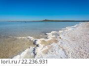 Купить «Соленое озеро Баскунчак, Астраханская область», фото № 22236931, снято 8 июня 2015 г. (c) Валерий Смирнов / Фотобанк Лори