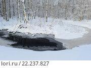 Изгиб берега  лесной реки в белоснежном березовом лесу. Стоковое фото, фотограф Сергей Кудрявцев / Фотобанк Лори