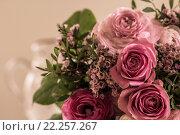 Купить «pink roses ostrich nosegay mother», фото № 22257267, снято 22 июня 2018 г. (c) PantherMedia / Фотобанк Лори