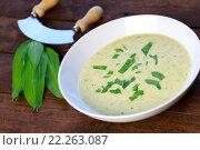 Купить «spring soup», фото № 22263087, снято 18 июля 2019 г. (c) PantherMedia / Фотобанк Лори