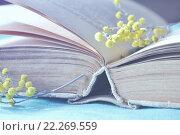 Купить «Открытая старая книга с небольшой веточной мимозы», фото № 22269559, снято 17 марта 2016 г. (c) Зезелина Марина / Фотобанк Лори