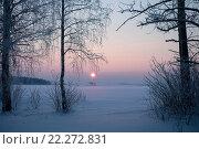Зимний вечер. Стоковое фото, фотограф Семенова Ольга Евгеньевна / Фотобанк Лори