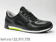 Купить «Мужская обувь. Кроссовка чёрного цвета на светлом фоне», эксклюзивное фото № 22311735, снято 22 марта 2016 г. (c) Игорь Низов / Фотобанк Лори