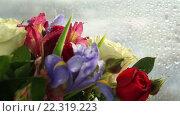 Купить «Капли воды падают на букет цветов», видеоролик № 22319223, снято 10 февраля 2016 г. (c) Юлия Машкова / Фотобанк Лори