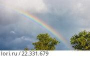 Купить «Осенний пейзаж. Радуга над лесом», фото № 22331679, снято 26 августа 2014 г. (c) Алексей Ларионов / Фотобанк Лори