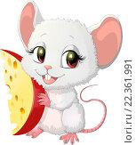 Купить «Белая мышь держит в лапах кусок сыра», иллюстрация № 22361991 (c) Panchenko Andrey / Фотобанк Лори