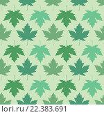 Купить «Кленовые листья», иллюстрация № 22383691 (c) Татьяна Гришина / Фотобанк Лори