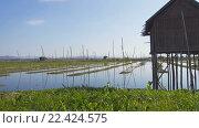Купить «Плавающие Сады на озеро Инле, Мьянма (Бирма)», видеоролик № 22424575, снято 30 марта 2016 г. (c) Михаил Коханчиков / Фотобанк Лори