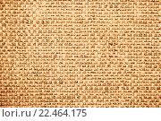 Купить «Обои», иллюстрация № 22464175 (c) Татьяна Гришина / Фотобанк Лори