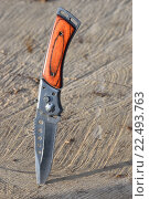 Купить «Складной нож воткнут в распиленное дерево в солнечных лучах», фото № 22493763, снято 20 марта 2016 г. (c) Максим Мицун / Фотобанк Лори