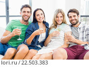 Купить «Smiling friends sitting on sofa drinking alcohol», фото № 22503383, снято 16 декабря 2015 г. (c) Wavebreak Media / Фотобанк Лори