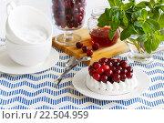 Сладкий десерт с клюквой, безе. Стоковое фото, фотограф Козлова Анастасия / Фотобанк Лори