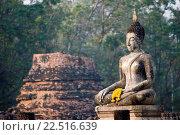 Купить «Buddha statue and ancient brick chedi Sukhothai Thailand.», фото № 22516639, снято 10 февраля 2007 г. (c) age Fotostock / Фотобанк Лори