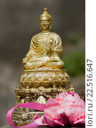 Купить «Buddha statues with offerings temple Chiang Mai Thailand.», фото № 22516647, снято 31 января 2007 г. (c) age Fotostock / Фотобанк Лори