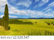Сельский пейзаж, Тоскана, Италия (2015 год). Стоковое фото, фотограф Наталья Волкова / Фотобанк Лори