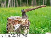 Старый выветренный топор, воткнутый в берёзовое полено на лужайке, покрытой зелёной травой. Стоковое фото, фотограф Алексей Безрук / Фотобанк Лори