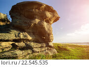 Купить «Старая скала на берегу озера», фото № 22545535, снято 17 августа 2013 г. (c) Зезелина Марина / Фотобанк Лори