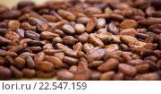 Купить «Какао-бобы - плоды шоколадного дерева», фото № 22547159, снято 5 марта 2016 г. (c) Татьяна Белова / Фотобанк Лори