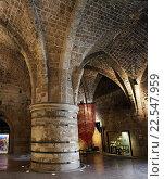 Купить «Интерьер рыцарского зала в городе крестоносцев в Акко», фото № 22547959, снято 2 марта 2016 г. (c) Irina Opachevsky / Фотобанк Лори