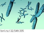 Купить «Хромосомы», фото № 22549335, снято 3 апреля 2020 г. (c) Wavebreak Media / Фотобанк Лори