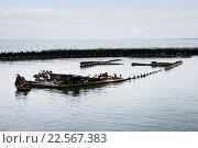 Корабли тонут. Стоковое фото, фотограф Татьяна Маслова / Фотобанк Лори