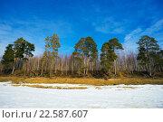 Купить «Пейзаж ранней весной в Сибири, Югра», фото № 22587607, снято 13 апреля 2016 г. (c) Алексей Маринченко / Фотобанк Лори