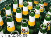 Пустые пивные зелёные бутылки в ящиках (2015 год). Редакционное фото, фотограф Кохан Пётр / Фотобанк Лори