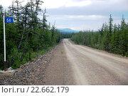 Дорога в тайге, Чукотка. Стоковое фото, фотограф Daniil Nasonov / Фотобанк Лори