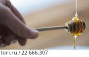 Купить «hand holding dipper with pouring honey», видеоролик № 22666307, снято 15 апреля 2016 г. (c) Syda Productions / Фотобанк Лори