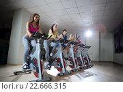 Купить «People on cycle», фото № 22666315, снято 1 ноября 2015 г. (c) Raev Denis / Фотобанк Лори