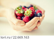 Купить «close up of woman hands holding berries», фото № 22669163, снято 28 апреля 2015 г. (c) Syda Productions / Фотобанк Лори