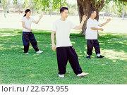 Купить «People practicing thai chi in park», фото № 22673955, снято 19 декабря 2014 г. (c) Sergey Nivens / Фотобанк Лори