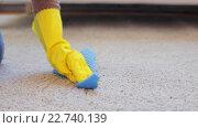 Купить «woman in gloves cleaning carpet or rug with rag», видеоролик № 22740139, снято 17 апреля 2016 г. (c) Syda Productions / Фотобанк Лори