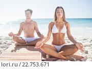 Купить «Happy couple doing yoga», фото № 22753671, снято 10 марта 2016 г. (c) Wavebreak Media / Фотобанк Лори