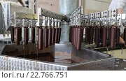 Купить «Автоматическая линия по производству мороженого эскимо», видеоролик № 22766751, снято 23 апреля 2018 г. (c) Евгений Ткачёв / Фотобанк Лори